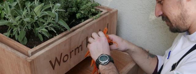 Compost maken met wormen