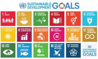 SDG doelen