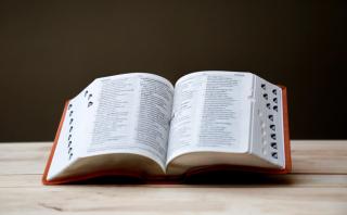 woordenboek_socco,warmhartig,plotsbond